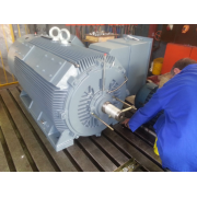 New WEM Medium Voltage Motor - 275kW 2P 6600v