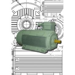 Y2-Series Compact TEFC Motors